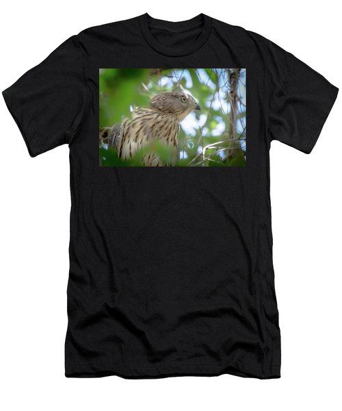 Red-shouldered Hawk Fledgling 1 Men's T-Shirt (Athletic Fit)
