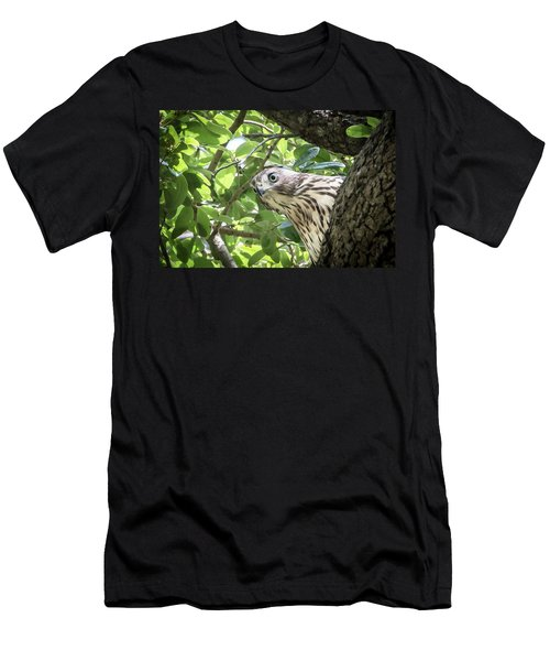 Red-shouldered Hawk Fledgling - 5 Men's T-Shirt (Athletic Fit)