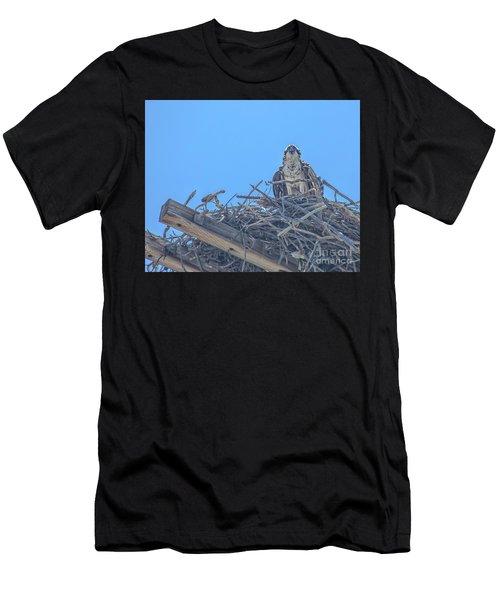 Osprey Nest Men's T-Shirt (Athletic Fit)