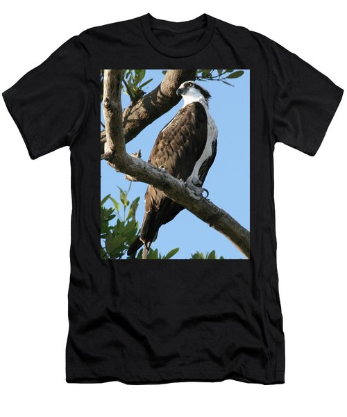 Men's T-Shirt (Slim Fit) featuring the photograph Osprey - Perched by Jerry Battle