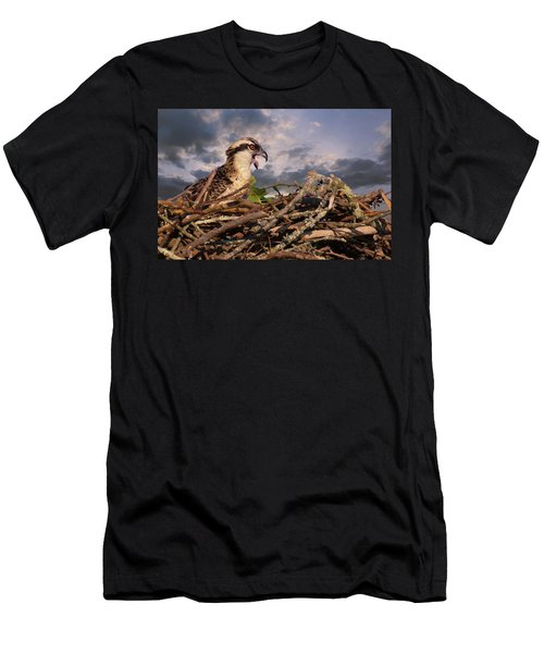 Osprey Talk Men's T-Shirt (Athletic Fit)