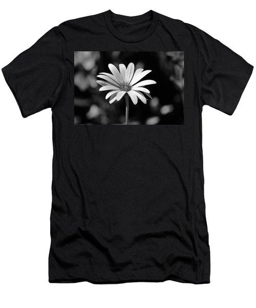 Osteospermum  Men's T-Shirt (Athletic Fit)