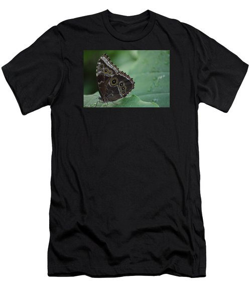 Owl Butterfly Men's T-Shirt (Slim Fit) by Linda Geiger