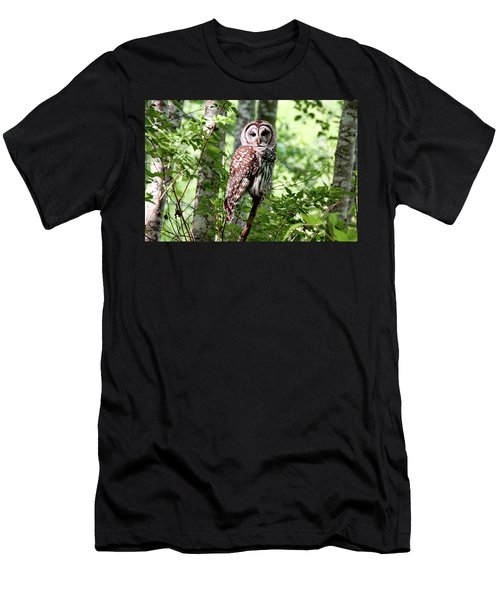 Owl In The Forest Men's T-Shirt (Slim Fit) by Peggy Collins