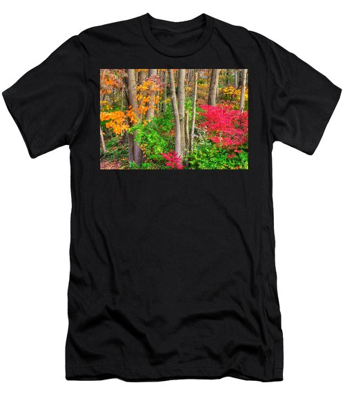 Pa Country Roads - Autumn Flourish - Harmony Hill Nature Area - Chester County Pa Men's T-Shirt (Athletic Fit)