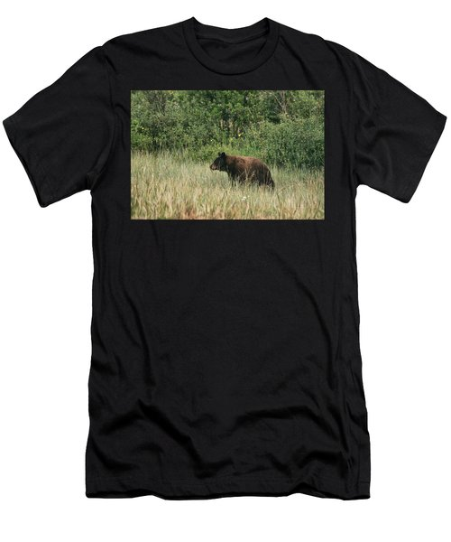 Pagosa Momma Bear Men's T-Shirt (Athletic Fit)
