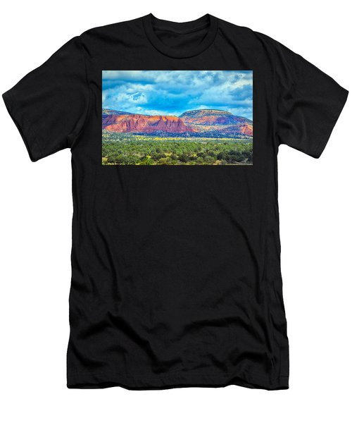 Painted New Mexico Men's T-Shirt (Athletic Fit)