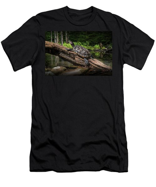 Painted Turtle Sitting On A Log Men's T-Shirt (Athletic Fit)