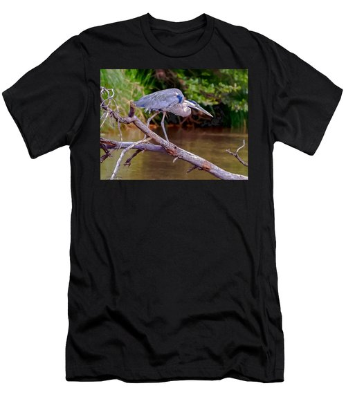 Painting Blue Heron Oak Creek Men's T-Shirt (Athletic Fit)