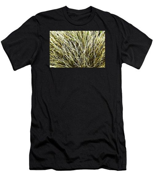 Pale Grasses Men's T-Shirt (Athletic Fit)