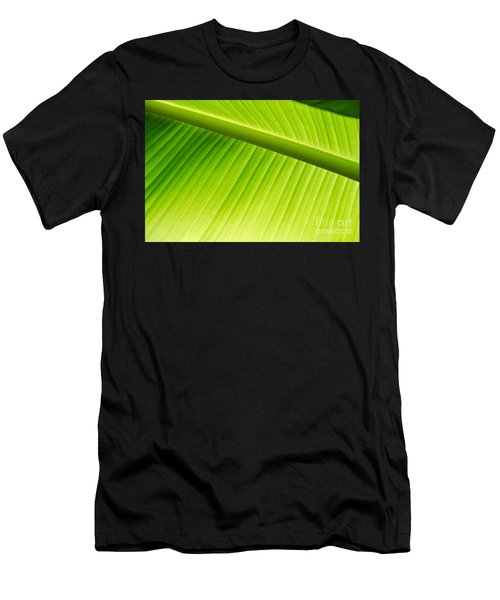 Palm Leaf Background Men's T-Shirt (Athletic Fit)