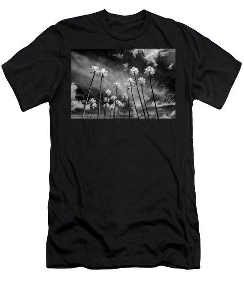 Palms Men's T-Shirt (Athletic Fit)