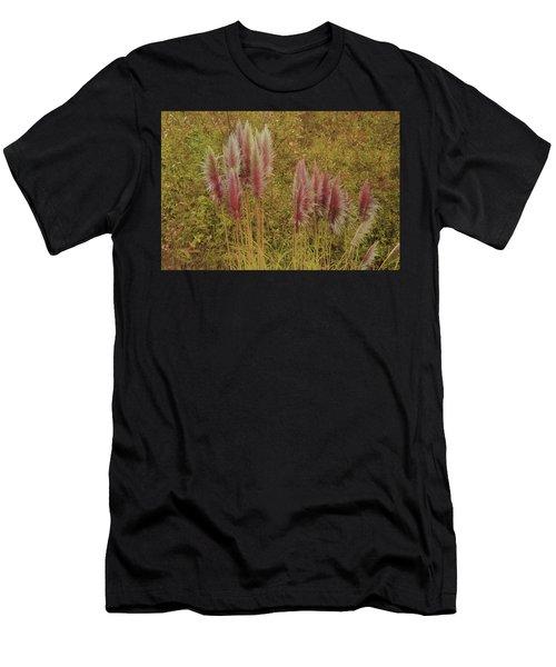 Pampas Grass Men's T-Shirt (Athletic Fit)