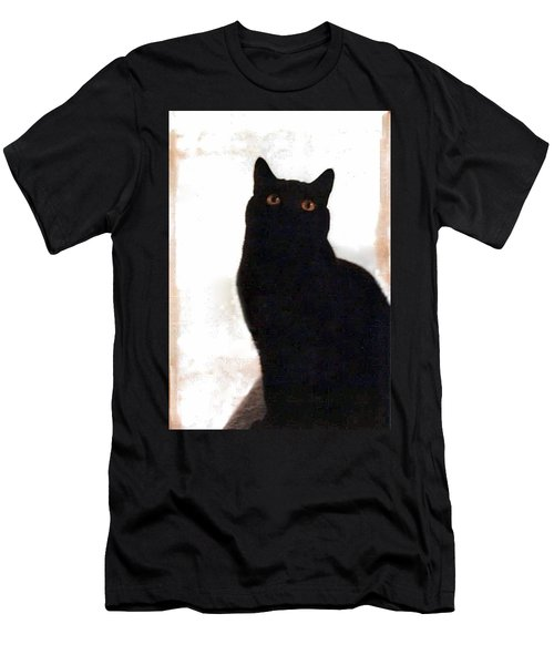 Panther The British Shorthair Cat Men's T-Shirt (Athletic Fit)