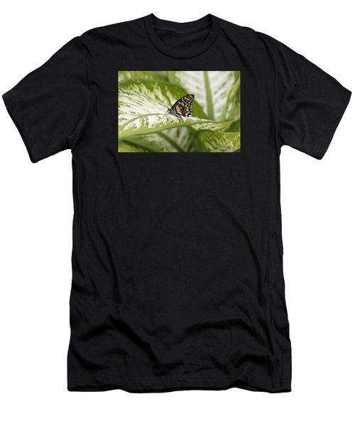 Papilio Demoleus Men's T-Shirt (Athletic Fit)