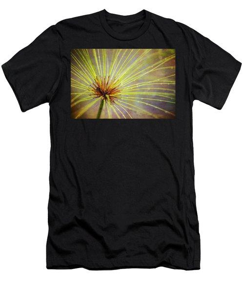 Papyrus Men's T-Shirt (Athletic Fit)
