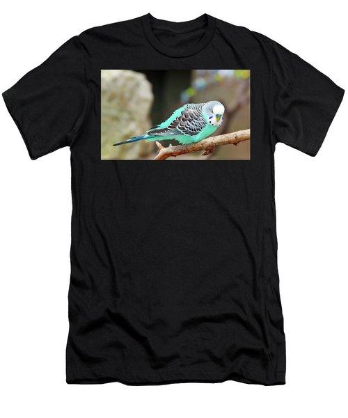 Parakeet  Men's T-Shirt (Athletic Fit)