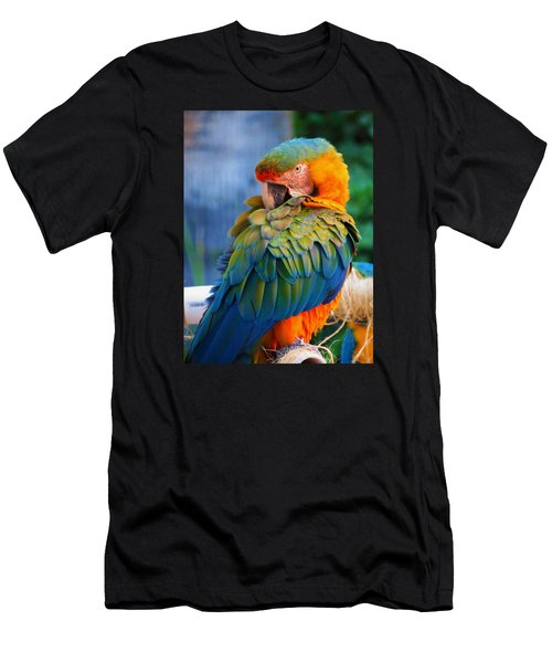 Parrot 2 Men's T-Shirt (Athletic Fit)