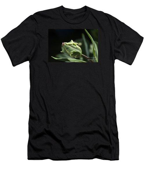 Parrot Tulip Bud Men's T-Shirt (Athletic Fit)