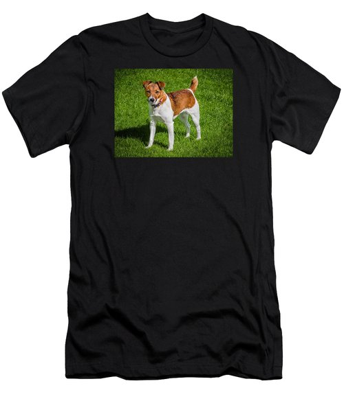 Parson Jack Russell Men's T-Shirt (Athletic Fit)