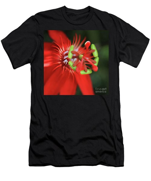 Passiflora Vitifolia Scarlet Red Passion Flower Men's T-Shirt (Slim Fit) by Sharon Mau
