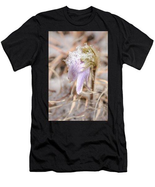 Past Pasque Men's T-Shirt (Athletic Fit)