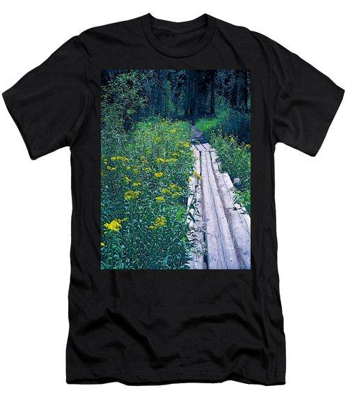 Path 4 Men's T-Shirt (Slim Fit) by Pamela Cooper