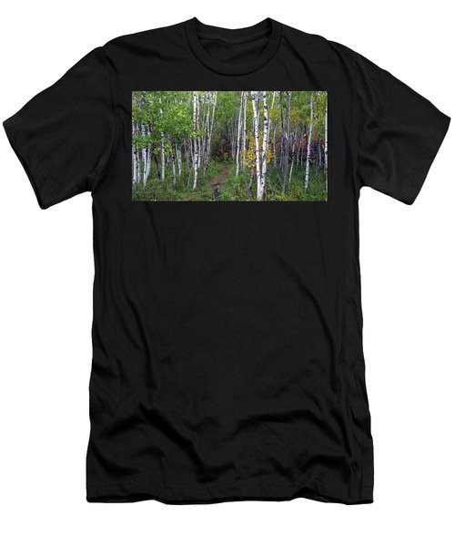 Path In The Woods 5 Men's T-Shirt (Athletic Fit)