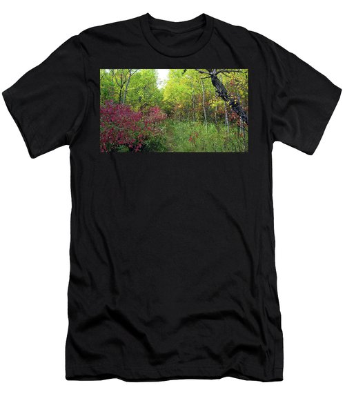Path In The Woods 8 Men's T-Shirt (Athletic Fit)