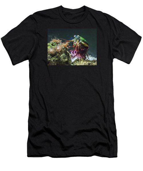 Peacock Mantis Shrimp Profile Men's T-Shirt (Athletic Fit)
