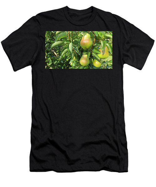 Pears Men's T-Shirt (Athletic Fit)