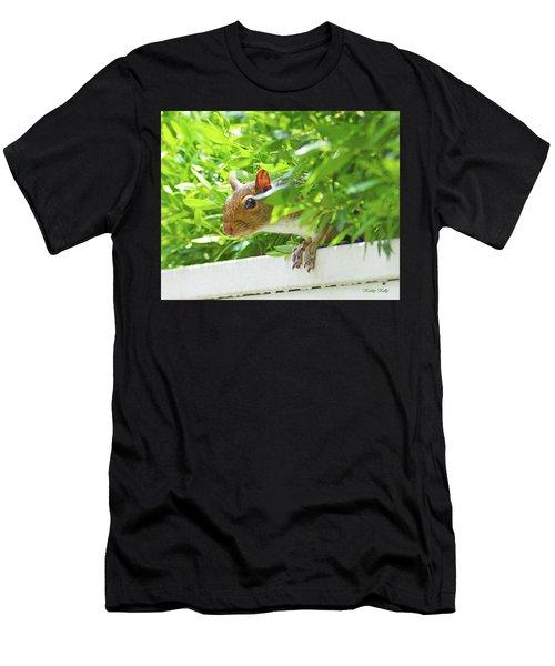 Peek-a-boo Gray Squirrel Men's T-Shirt (Athletic Fit)