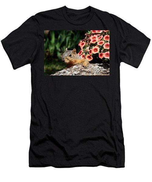 Peek-a-boo Squirrel Men's T-Shirt (Athletic Fit)