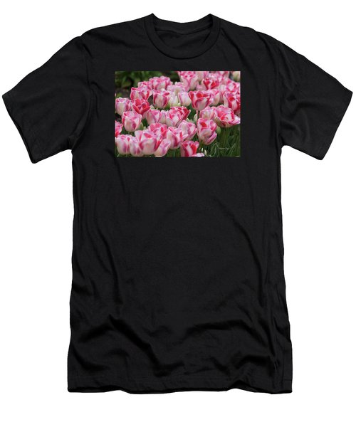 Peppermint Tulip Field IIi Men's T-Shirt (Athletic Fit)