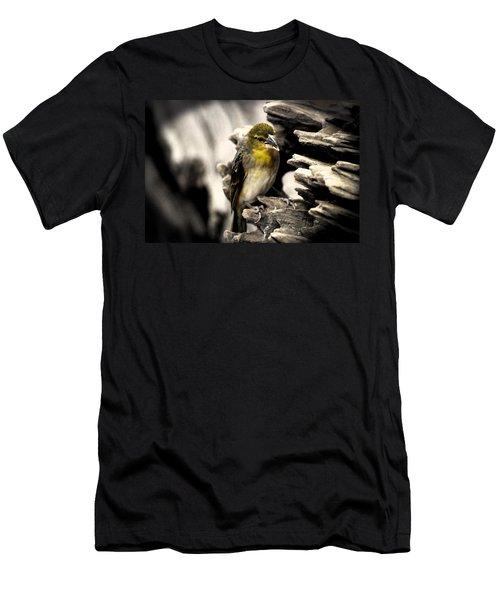 Perched Men's T-Shirt (Athletic Fit)