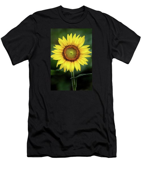 Perfect Sunflower Men's T-Shirt (Athletic Fit)
