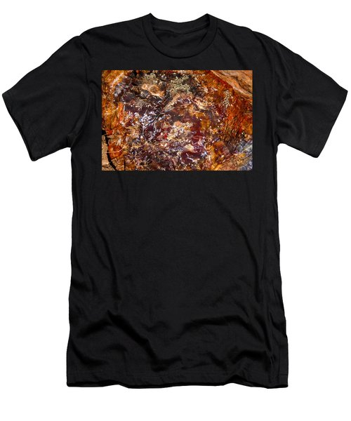 Petrified Colours Men's T-Shirt (Athletic Fit)