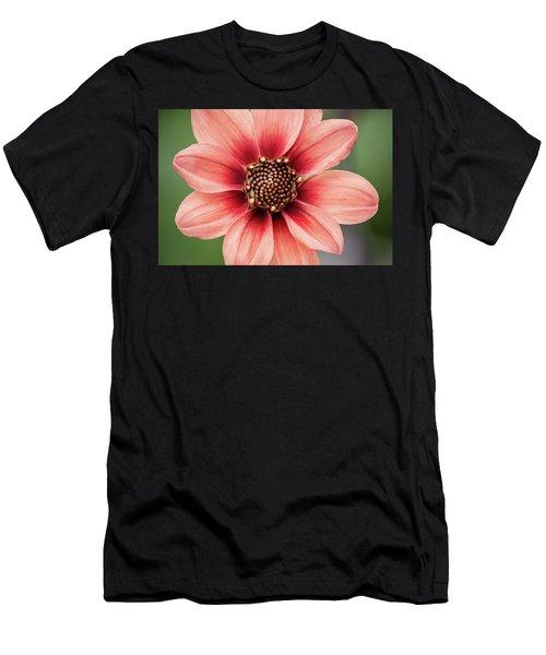 Pgc Dahlia Men's T-Shirt (Athletic Fit)