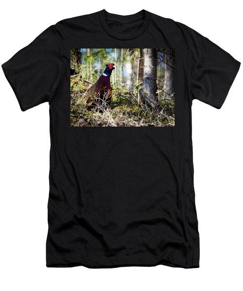 Pheasant In The Forest Men's T-Shirt (Slim Fit) by Teemu Tretjakov