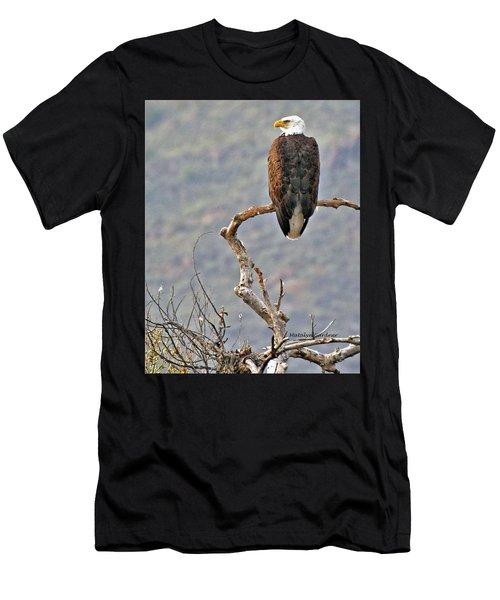 Phoenix Eagle Men's T-Shirt (Athletic Fit)