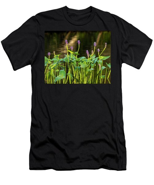 Pickerel Weed - Pontederia Cordata Men's T-Shirt (Athletic Fit)
