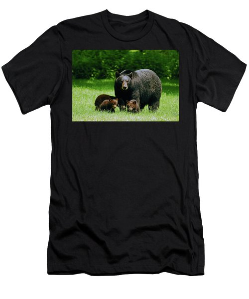 Picnic Crashers Men's T-Shirt (Slim Fit) by Lori Tambakis