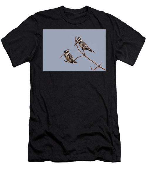 Pied Kingfisher Pair Men's T-Shirt (Athletic Fit)
