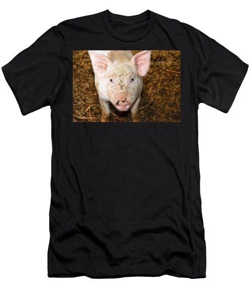 Pig Men's T-Shirt (Athletic Fit)