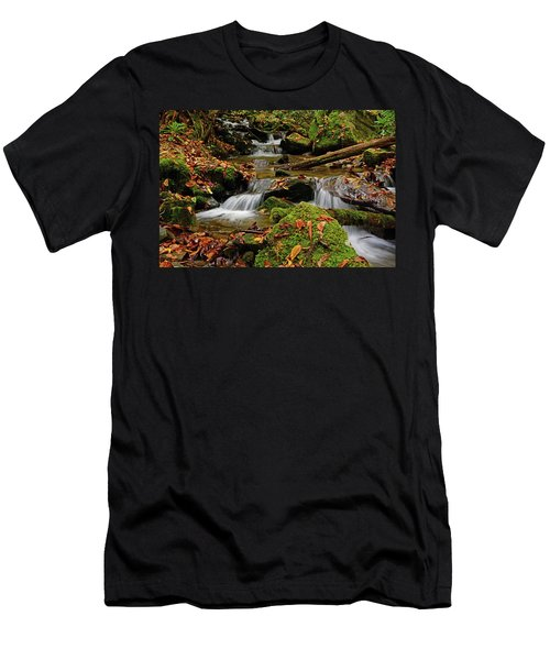 Pigeon Creek Cascades Men's T-Shirt (Athletic Fit)