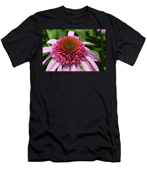 Pink Coneflower Close-up Men's T-Shirt (Athletic Fit)