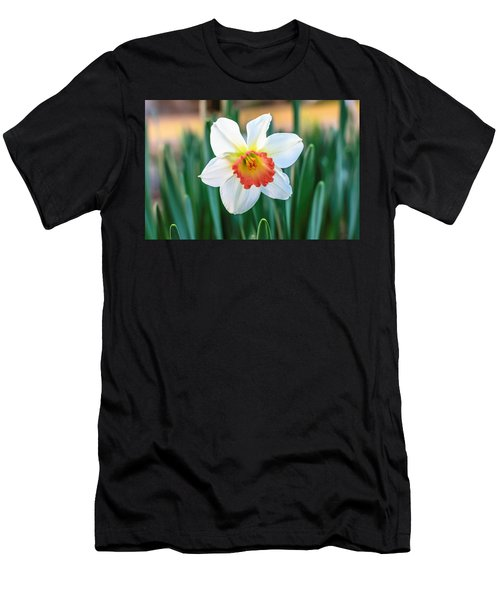 Pink Cup Solo Daffodil Men's T-Shirt (Athletic Fit)