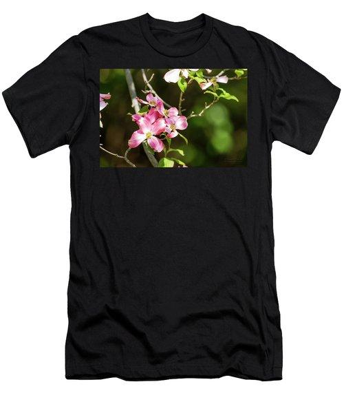Pink Dogwood Men's T-Shirt (Athletic Fit)