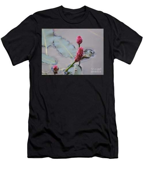 Pink Lily Pad Men's T-Shirt (Athletic Fit)