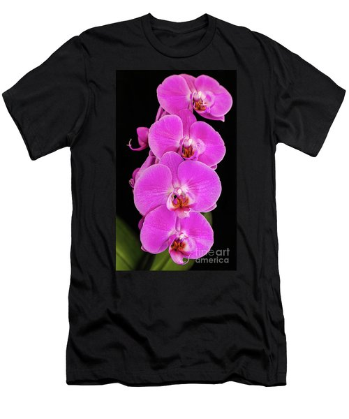 Pink Orchid Against A Black Background Men's T-Shirt (Athletic Fit)